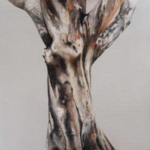 Natura morta con albero